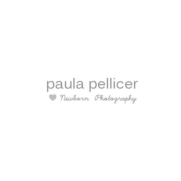Paula Pellicer – Febrero 2016